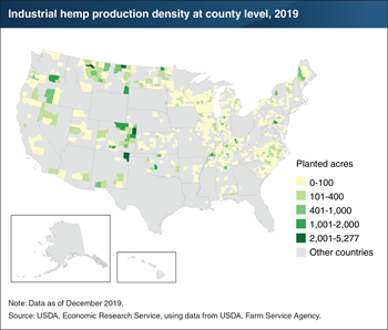U.S. acres planted with industrial hemp expanded rapidly in 2019