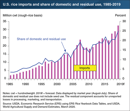 This bar chart shows that U.S. rice imports in 2019 and share of domestic and residual use, from 1985 to 2019.