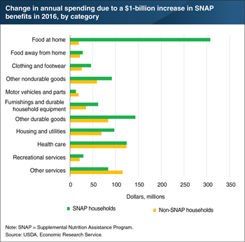 Higher SNAP benefits expand spending on food, and on other goods and services