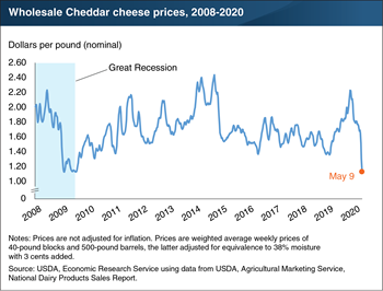 Wholesale price for Cheddar cheese falls sharply as demand falls