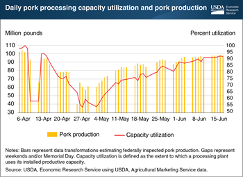 U.S. pork processing capacity utilization rebounds as COVID-19 infections of plant labor forces recede