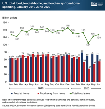 U.S. food spending in June 2020 was $12 billion less than in June 2019