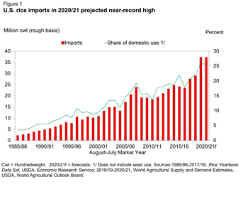 U.S. rice imports in 2020/21 projected near-record high