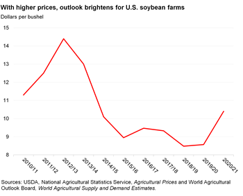 Outlook brightens for U.S. soybean farms with higher prices