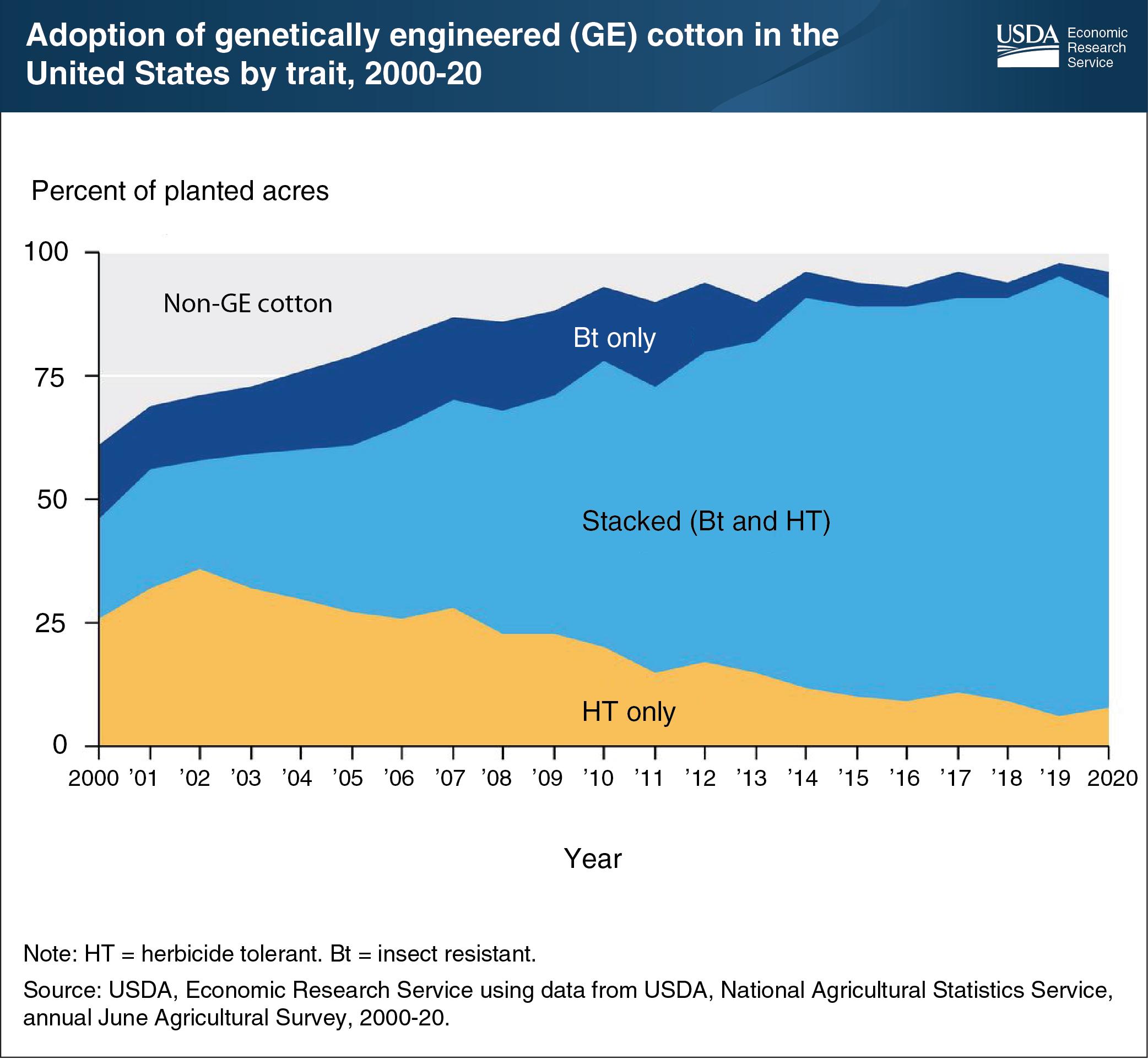 96% din bumbacul SUA provine din semințe GE