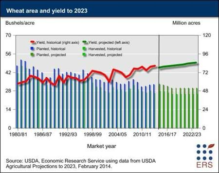 Wheat area and yield to 2023
