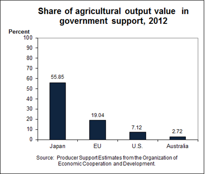 Share of agricultural output value from government support, 2011