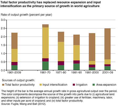 Total factor productivity has replaced resource expansion and input intensification as the primary source of growth in world agriculture