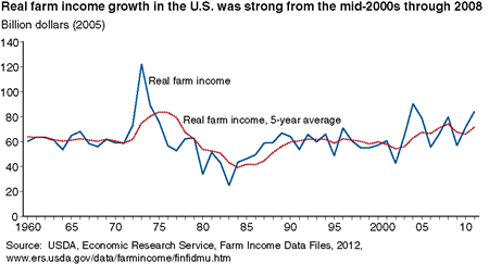 Real farm income growth in the U.S. was strong from the mid-2000s through 2008