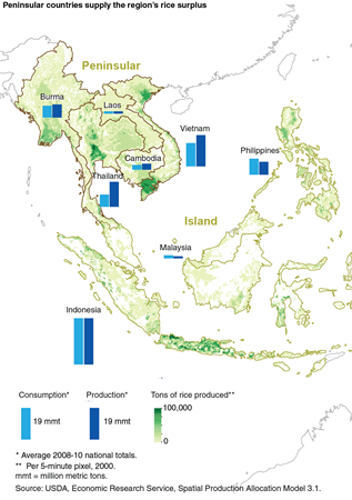 Peninsular countries supply the region's rice surplus