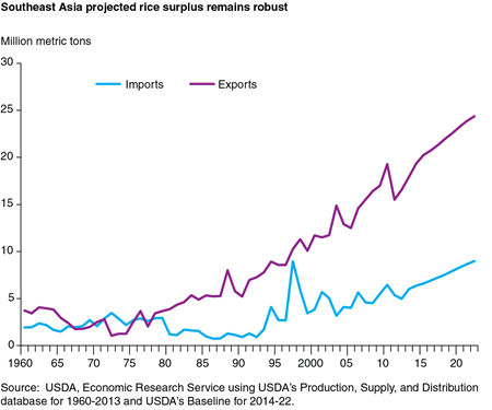 Southeast Asia projected rice surplus remains robust