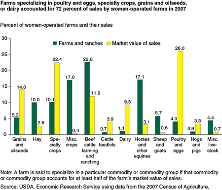 Farms specializing in poultry and eggs, specialty crops, grains and oilseeds, or dairy accounted for 72 percent of sales by women-operated farms in 2007