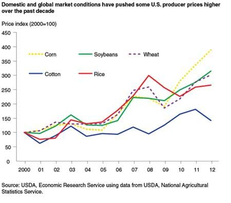 Domestic and global market conditions have pushed some U.S. producer prices higher over the past decade