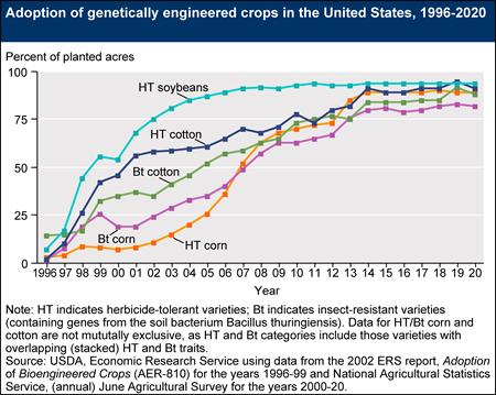 Adoção de plantações geneticamente modificadas nos Estados Unidos, 1996-2019