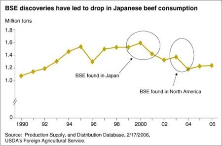 BSE discoveries have led to drop in Japanese beef consumption