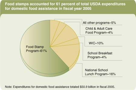 Food stamps accounted for 61 percent of total USDA expenditures for domestic food assistance in fiscal year 2005