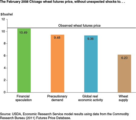 The February 2008 Chicago wheat futures price, without unexpected shocks to...