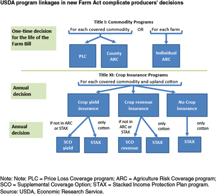 Program linkages in new Farm Act complicate producers' decisions
