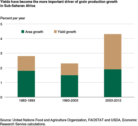 Yields have become the more important driver of grain production growth in Sub-Saharan Africa