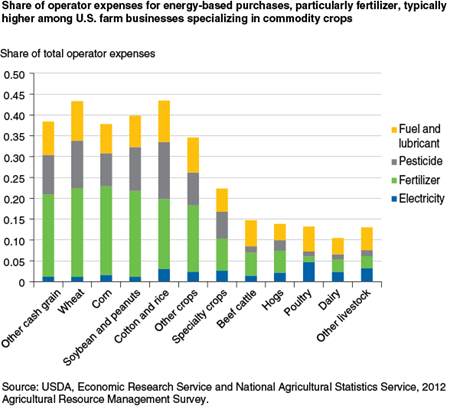 Share of operator expenses for energy-based purchases, particularly fertilizer, typically higher among U.S. farm businesses specializing in commodity crops