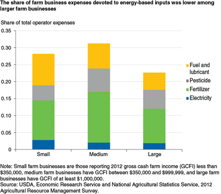 The share of farm business expenses devoted to energy-based inputs was lower among larger farm businesses