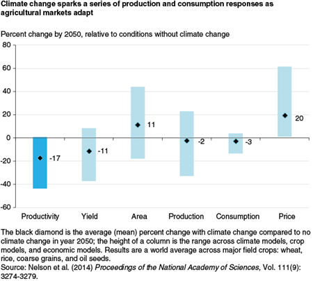 Climate change sparks a series of production and consumption responses as agricultural markets adapt