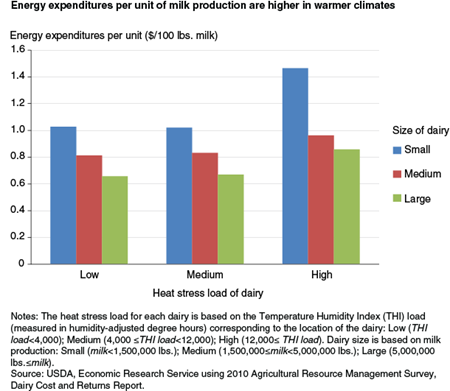 Energy expenditures per unit of milk production are higher in warmer climates
