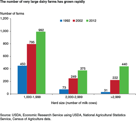 The number of very large dairy farms has grown rapidly