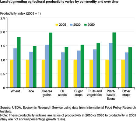 Land-augmenting agricultural productivity varies by commodity and over time