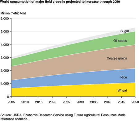 World consumption of major field crops is projected to increase through 2050