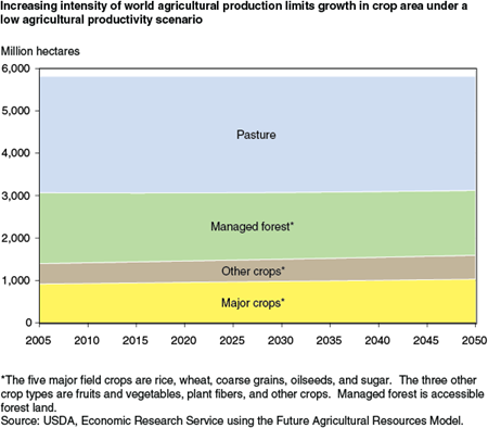 Increasing intensity of world agricultural production limits growth in crop area under a low agricultural productivity scenario