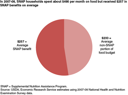 In 2007-08, SNAP households spent about $490 per month on food, but received $257 in SNAP benefits on average