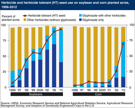 Glyphosate use is more widespread in soybean than in corn production