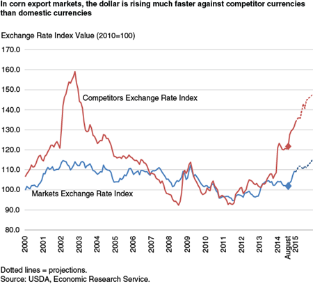 In corn export markets, the dollar is rising much faster against competitor currencies than domestic currencies