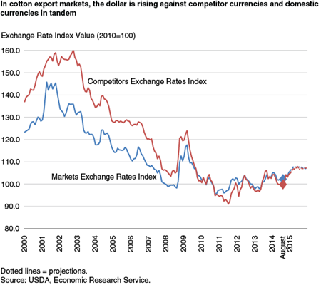 In cotton export markets the dollar is rising against competitor currencies and domestic currencies in tandem