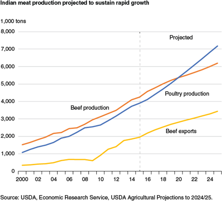 Indian meat production projected to sustain rapid growth