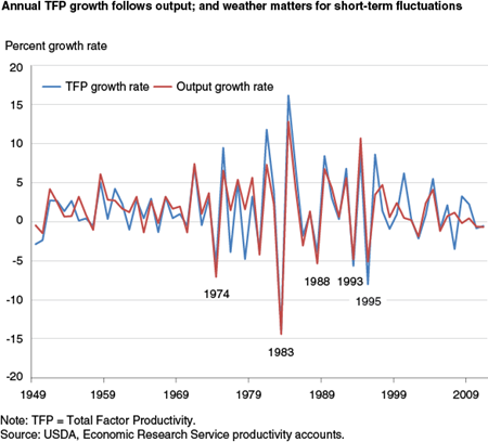 Annual TFP growth follows output; and weather matters for short-term fluctuations