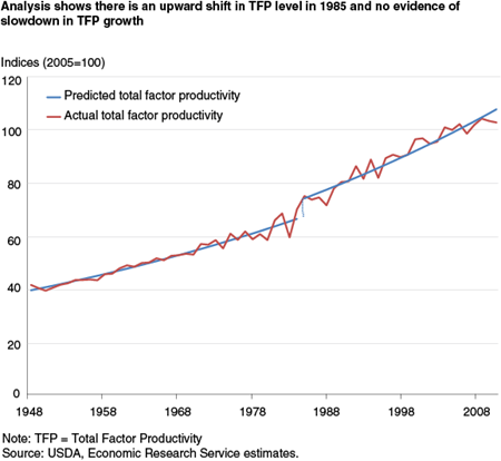 Analysis shows there is an upward shift in TFP level in 1985 and no evidence of slowdown in TFP growth