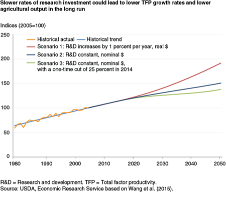 Slower rates of research investment could lead to lower TFP growth rates and lower agricultural output in the long run