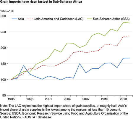 Grain imports have risen fastest in Sub-Saharan Africa