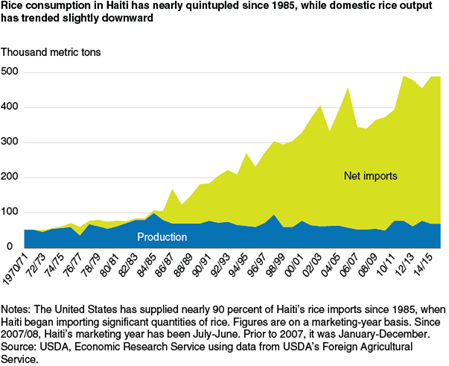 Rice consumption in Haiti has nearly quintupled since 1985, while domestic rice output has trended slightly downward