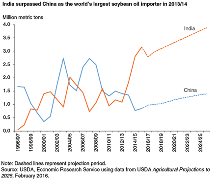 India surpassed China as the world's largest soybean oil importer in 2013/14