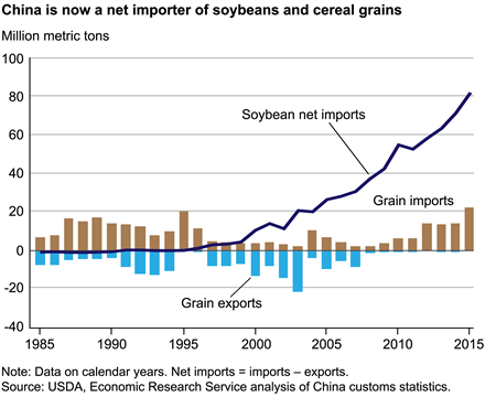 China became a net importer of soybeans in 1996 and cereal grains in 2009