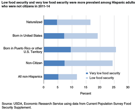Low food security and very low food security were more prevalent among Hispanic adults who were not citizens in 2011-14