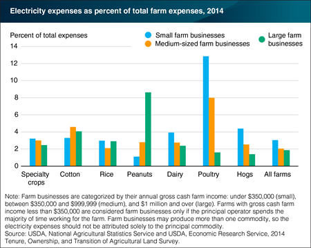 Share of electricity expenses vary by farm size and principal commodity