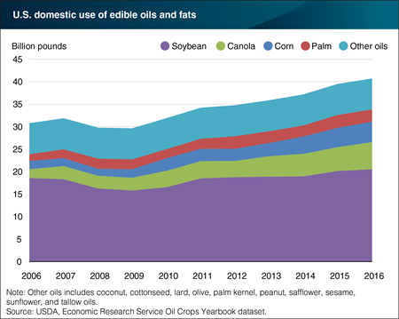 Domestic use of canola, corn, and palm oil growing at a faster rate than soybean oil