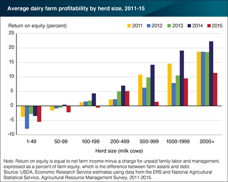 Dairy farming offers profits, but also financial risks