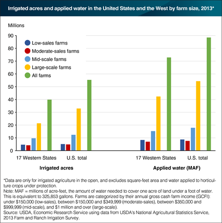 Large-scale farms had the biggest share of irrigated acres and water use in 2013
