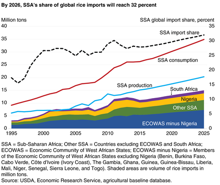 By 2026, SSA's share of global rice imports will reach 32 percent