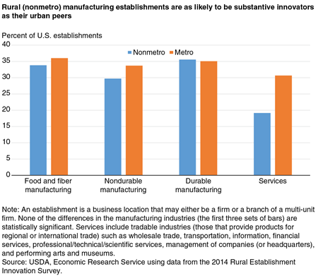 Rural (nonmetro) manufacturing establishments are as likely to be substantive innovators as their urban peers